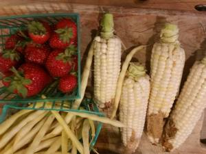 Strawberries, corn, yellow Roc d'Or bush beans
