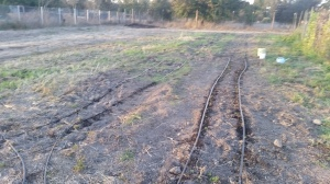 on the right, the bed where i am planting strawberries